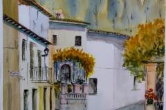 Acuarela Palmas
