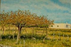 Higuera de Menorca -oleo